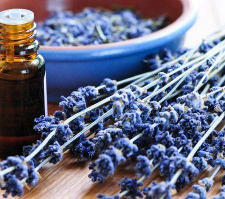 Как етерично масло от Лавандула ще промени живота ви?