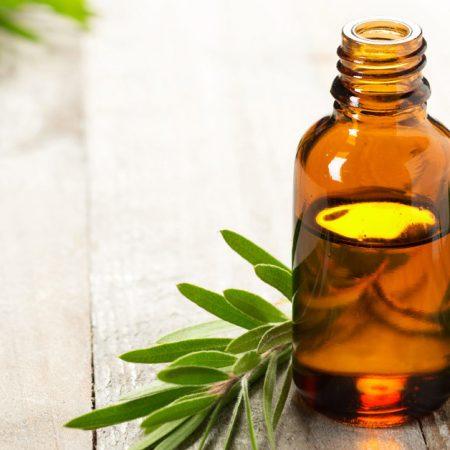 Етерично масло от чаено дърво – употреби и ползи