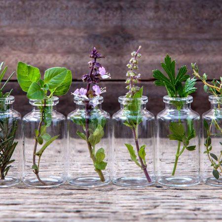 99 факта за етеричните масла, които никога не сте знаели