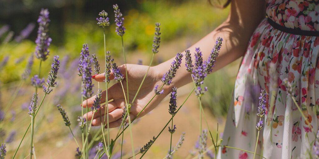 Основи на ароматерапията с етерични масла